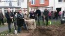 Pflanzaktion Bäume Innenhof 13.03.2015