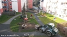 Pflanzaktion Bäume Innenhof 13.03.2015_2