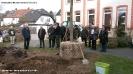 Pflanzaktion Bäume Innenhof 13.03.2015_7